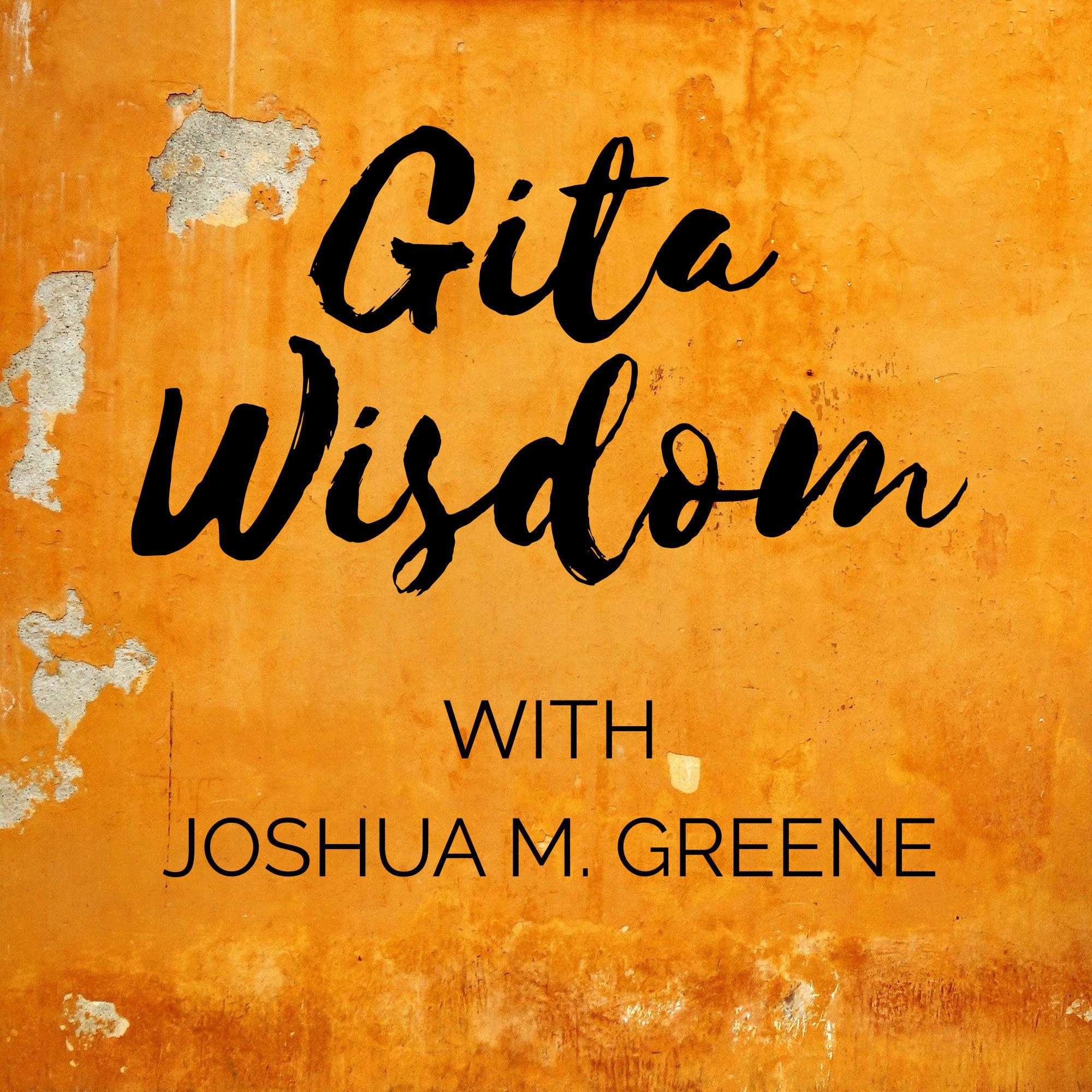 Gita Wisdom Teachings by Joshua M. Greene (Yogesvara)